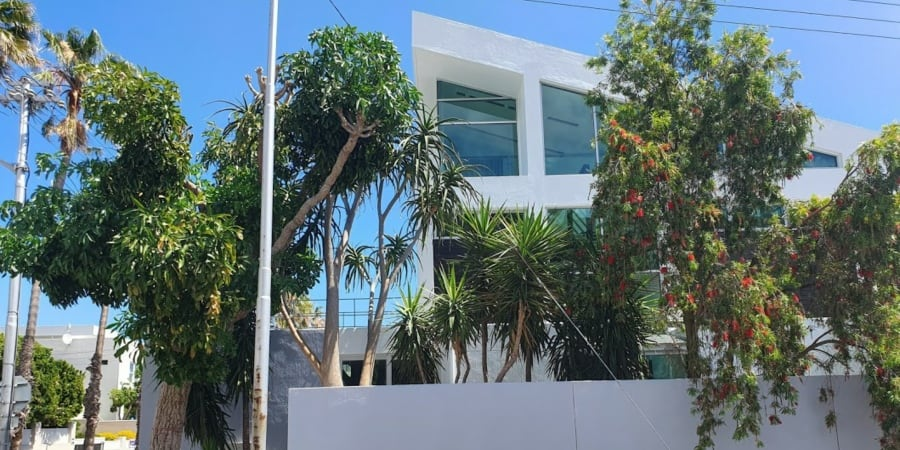 painters fresnaye